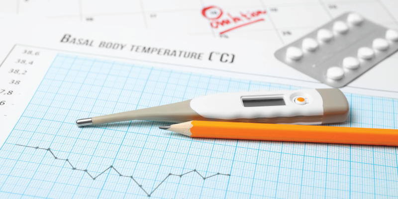 Trying to Conceive:  Ovulation