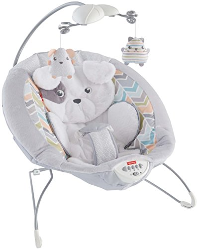 Fisher Price Snugapuppy Baby Bouncer
